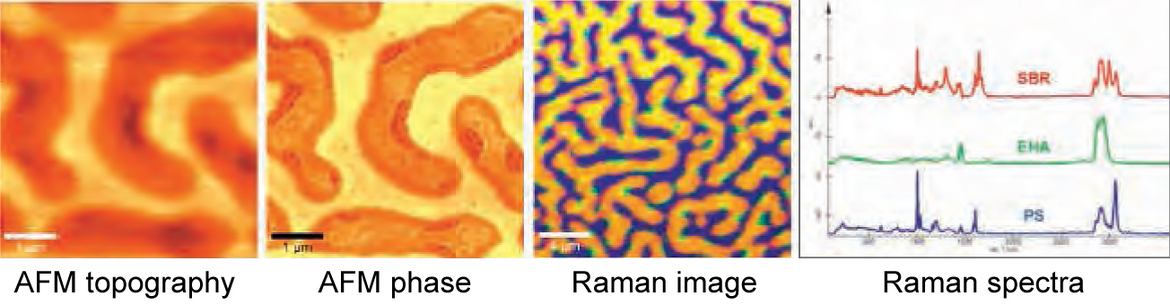Combining Raman imaging with AFM yields both molecular information and high-resolution topographic information on the sample surface. The figure shows a polymer mixture of three polymers (PS, EHA, SBR) on a glass substrate (Image: WITec GmbH)