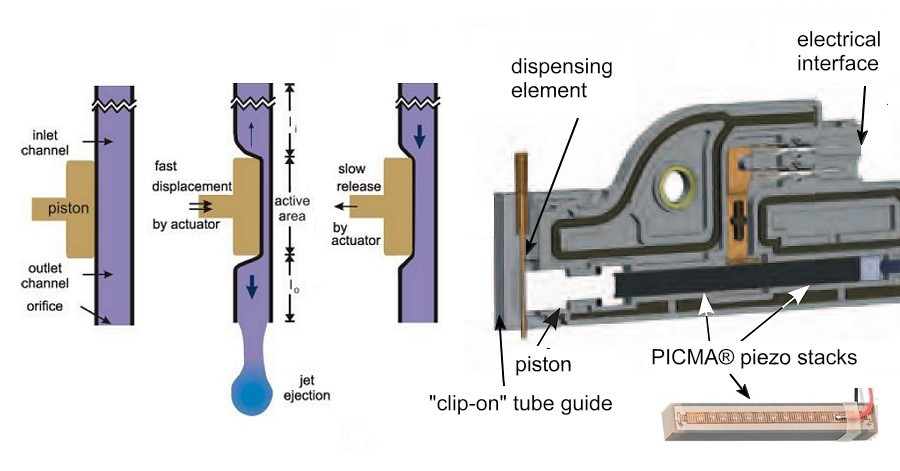 PipeJet micro-dosing pump. This system does not require a valve and is based on a PICMA® piezo-linear-direct drive actuator, displacing the liquid in a flexible tube. (Image: Biofluidix)