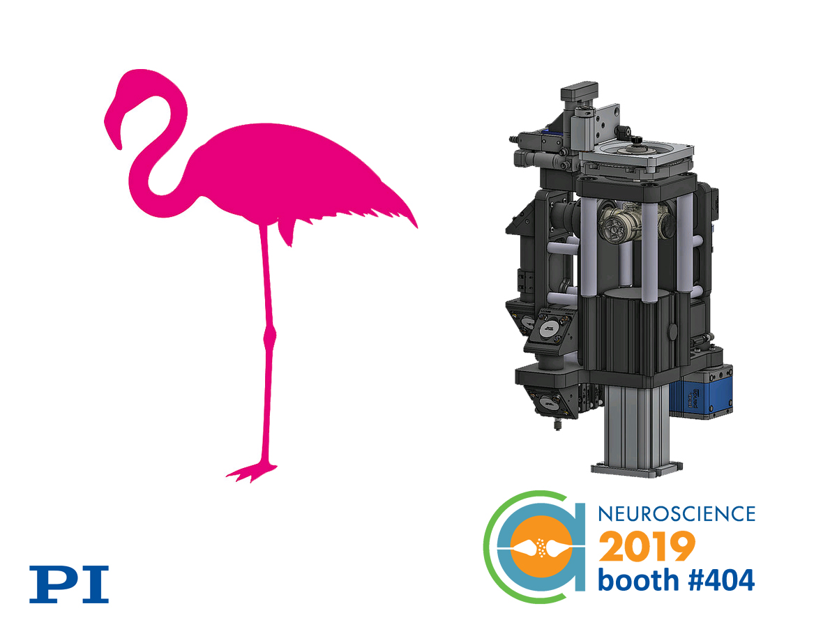 See The Flamingo Microscope Project at PI's Booth #404